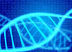 遺伝子写真