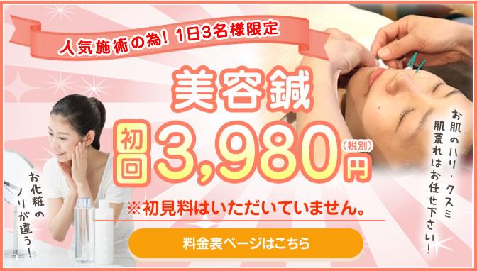 美容鍼初回体験3,980円