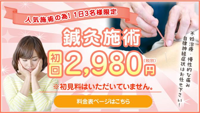 鍼灸施術初回体験2,980円